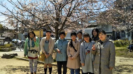 二条公園桜ランチ.JPG